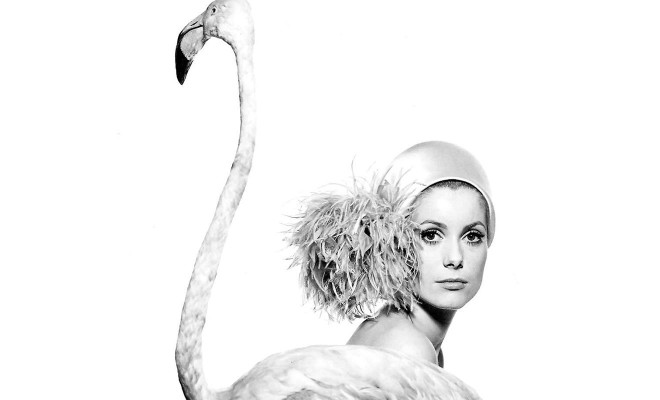 "© Catherine Deneuve photographed by David Bailey for ""Vogue"""